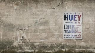 huey-projetobicho
